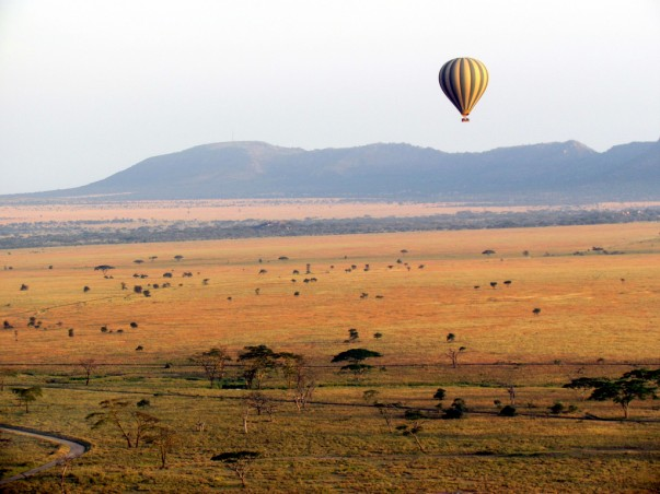 Float over the Serengeti National Park witha Hot Air Balloon!