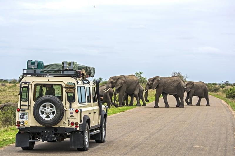https://images.mapsofworld.com/travel-blog/Kruger-National-Park.jpg