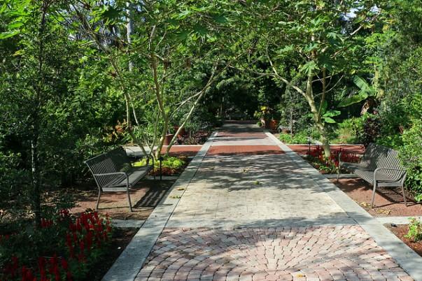 Leu Gardens, Orlando, FL