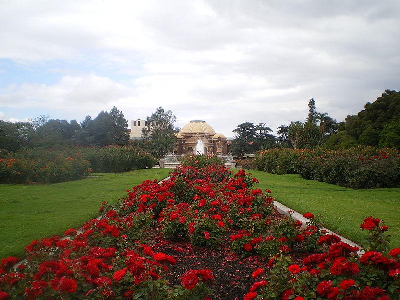 Rose Garden LA