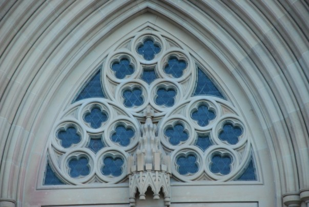 Admire St Marys Cathedral