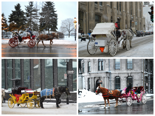 Carriage Ride in Old Montreal