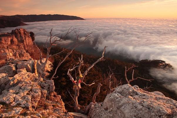 Dawn on Cloud Nine