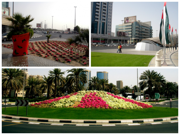 Dubai Roads – Green and Colorful Walkways