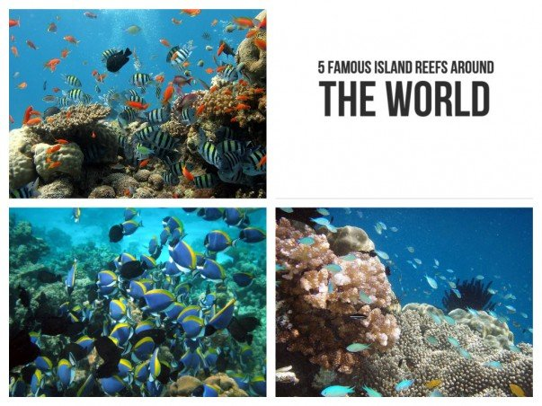 5 famous island reefs around the world Small islands around the world