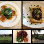 Review of Hollins House in Santa Cruz, California