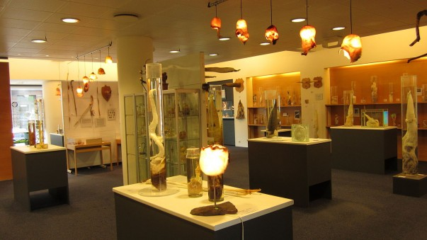 Exhibits at the Iceland Phallological Museum