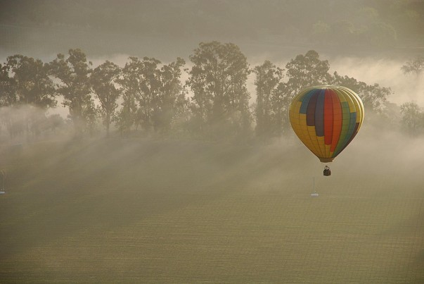 Take to the skies on a hot-air balloon ride over the Napa Valley!