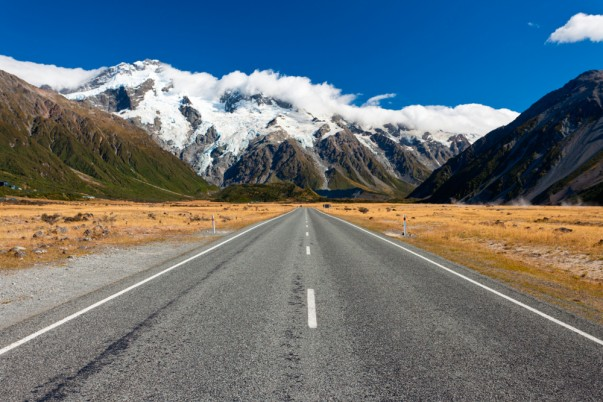 New Zealand Driving Tips