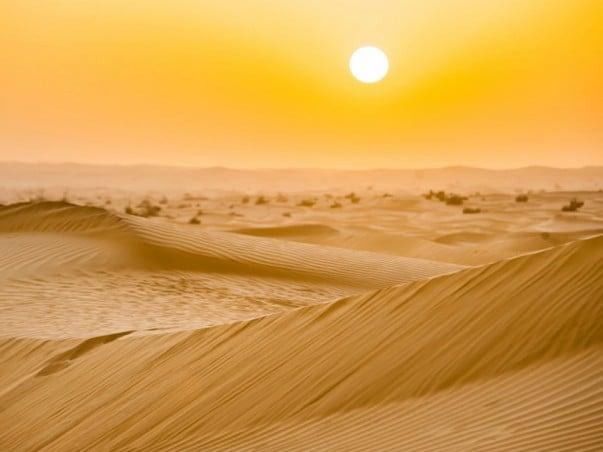 Sahara Desert Facts