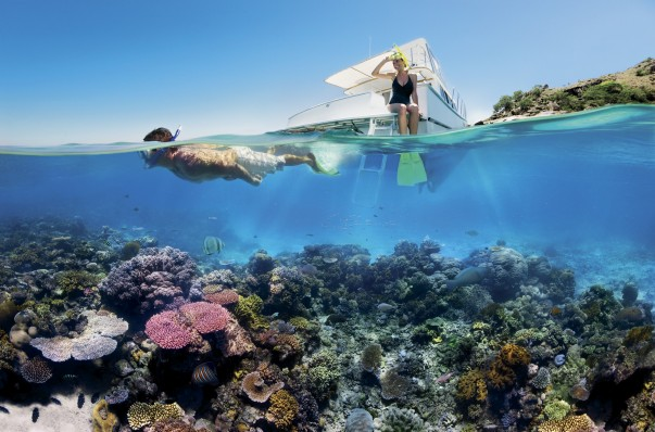 Swim at the Great Barrier Reef