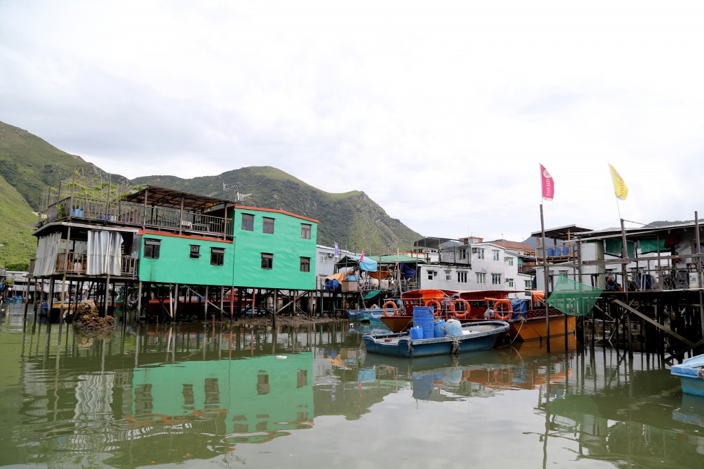 Tai O fishing Village and Dolphin cruise at Lantau Island