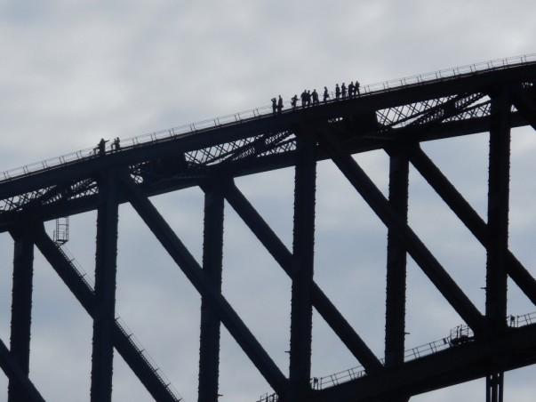 View from top of Sydney Harbor Bridge