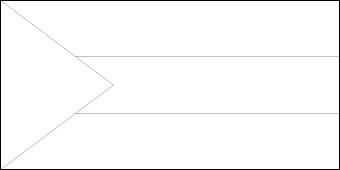 blank-palestine-flag
