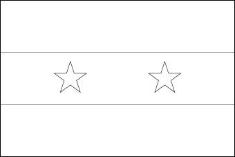 blank-syria-flag