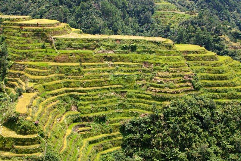 Terrazas del arroz de Banaue, Filipinas